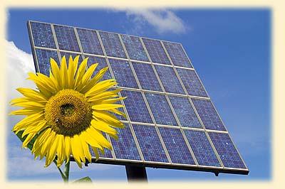 Green Solar Panel